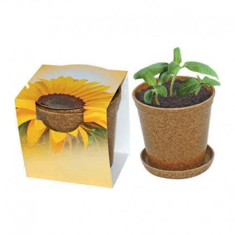 """Reklaminė saulėgraža ekologiškame vazonėlyje """"Easy Pot"""""""