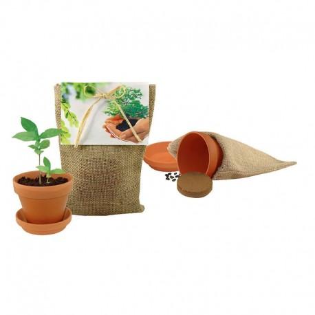 """Reklaminis medelis """"Plant your own Tree"""""""