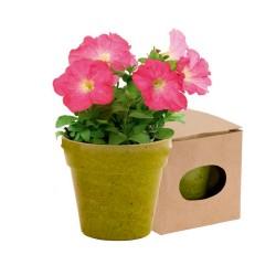 """Reklaminis augalas vazonėlyje """"Petunia"""""""