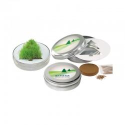 """Reklaminis augalas metalinėje dėžutėje """"Growing Fir Tree"""""""