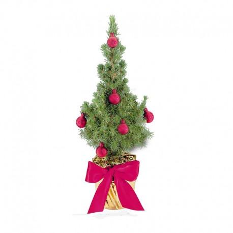 "Verslo dovana ""Natūrali Kalėdų eglutė"""