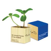Reklaminis augalas su logotipu